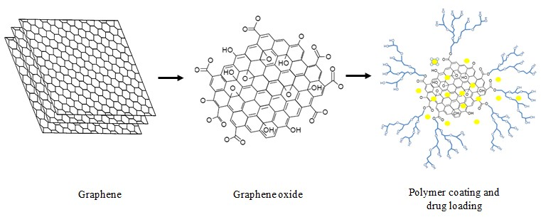 Figure3. Graphene oxide as drug delivery system.
