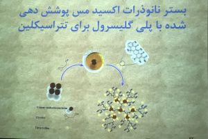 Zahra PhD Defense
